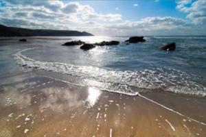 BlueMonkey-Beach