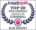 best dog friendly hotels in Cornwall