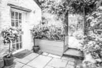 Backgarden | Blue Monkey Cornwall
