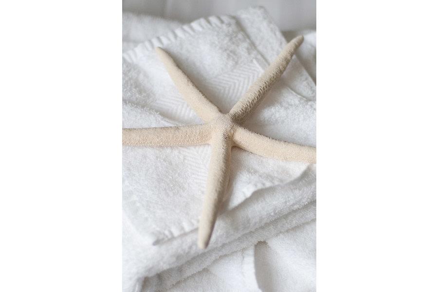 Fluffy white towels | Blue Monkey Cornwall
