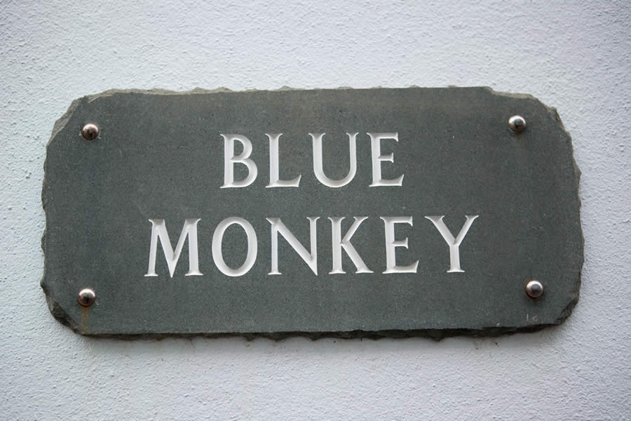 Blue Monkey Sign