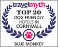 best dog friendly hotels in Cornwall