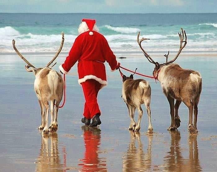 Cornish Christmas