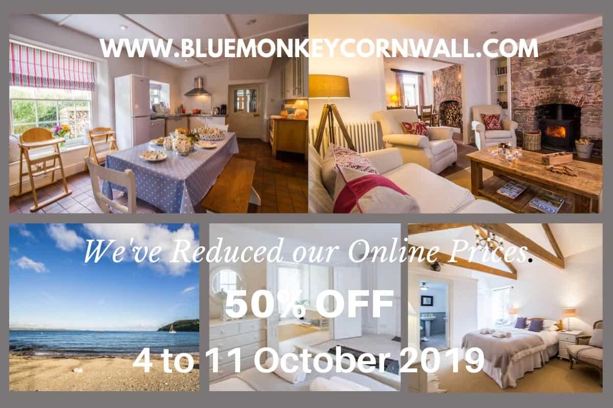 Blue Monkey Cornwall 50% Off